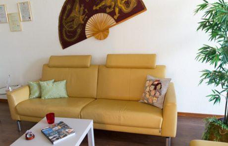 Praxis Lanz Zürich Couch